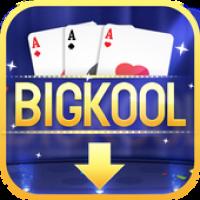 Bigkool Cool Games